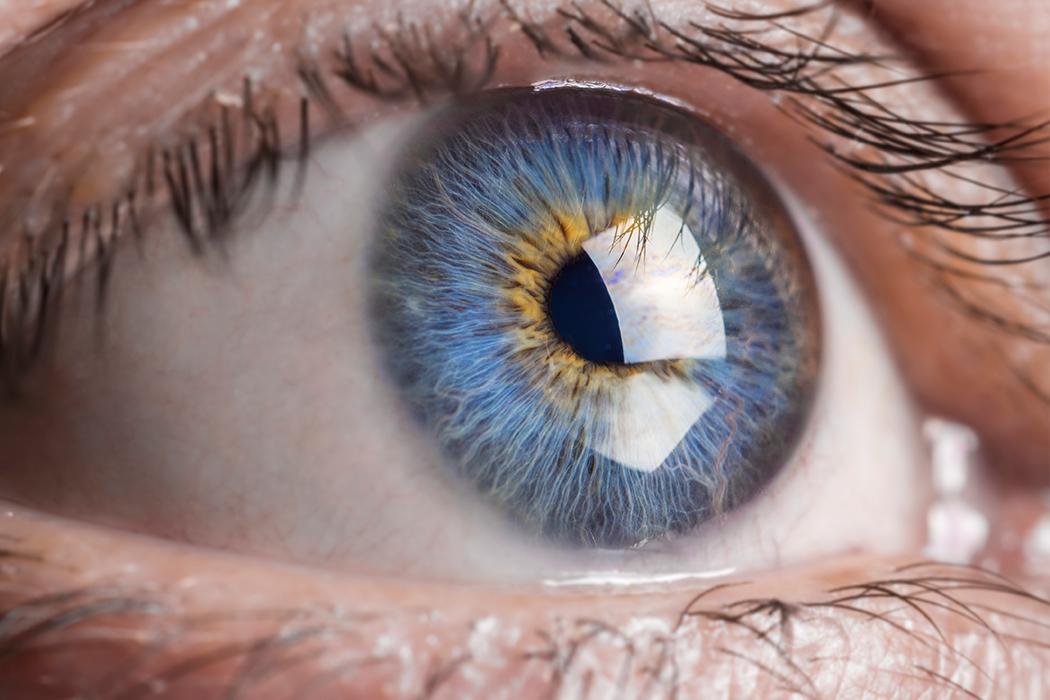 Nahaufnahme Auge mit blauer Iris - Netzhautuntersuchung Augenklinik Dr. Hoffmann